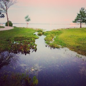 Day 10 - Green Cove Springs