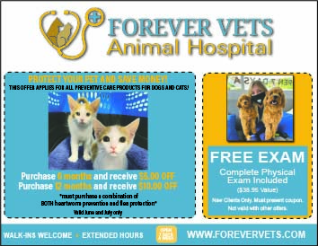 Forever Vets Animal Hospital coupon for free exam and discount on preventative care for dogs and cats!
